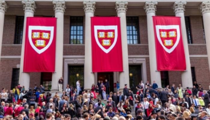 Camino a Harvard con una beca de investigación