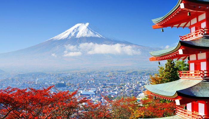 La UNESCO y Japón ofrecen becas de investigación