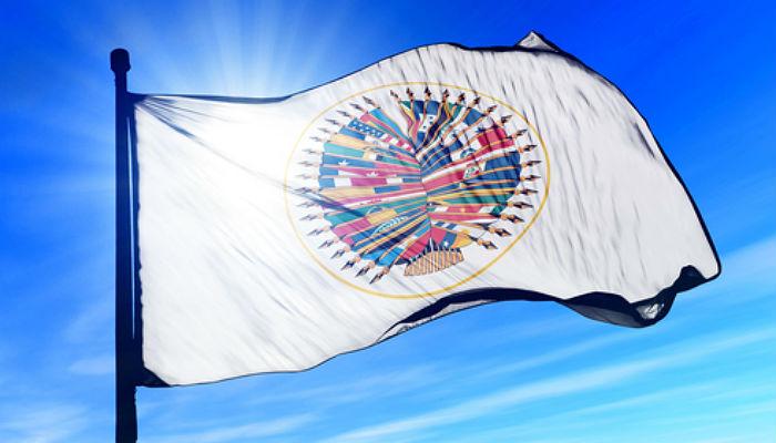 Realiza una pasantía de verano en la OEA