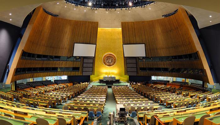 Young Professionals de la ONU