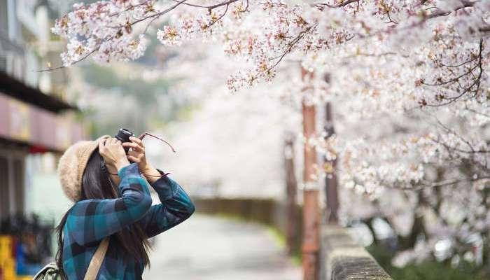 Becas Monbukagakusho con destino Japón