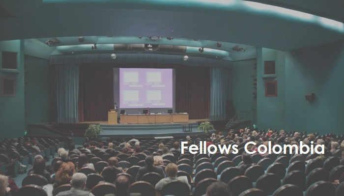 ¿Qué son las Fellows Colombia del Icetex?