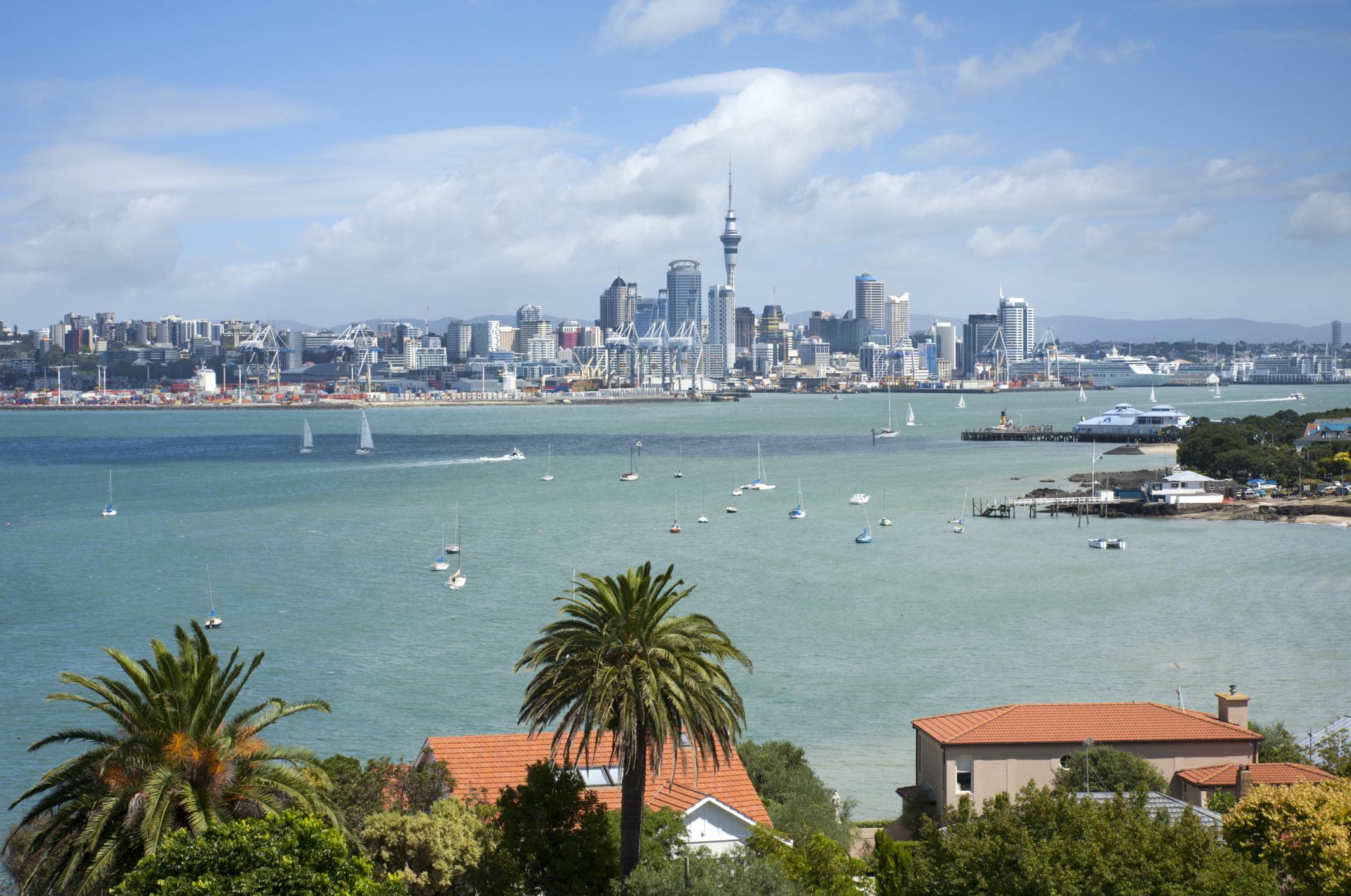 Nuevas oportunidades para estudiar un grado en Nueva Zelanda