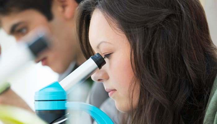 Con ganas de ciencia: programas, concursos y becas para jóvenes
