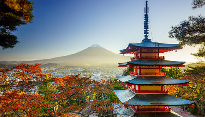 Becas Vulcanus: 14.000 euros y cursos gratuitos para hacer prácticas en Japón