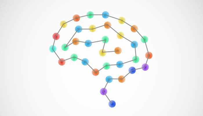 Semana Mundial del Cerebro: actividades para descubrir todo sobre este órgano vital