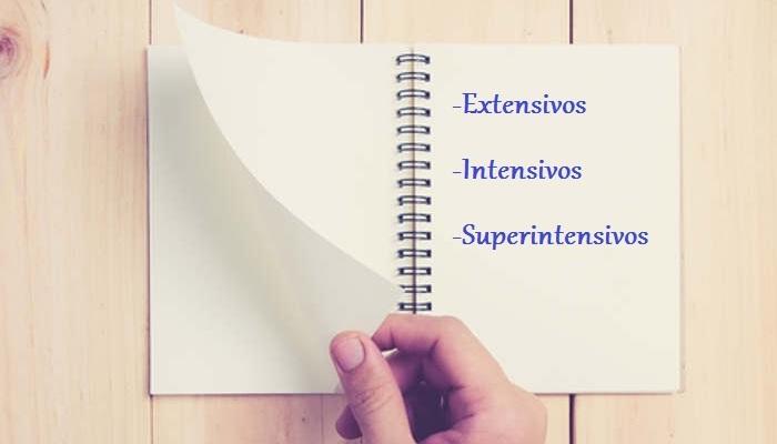 Idiomas en formato exprés: extensivos, intensivos y superintensivos