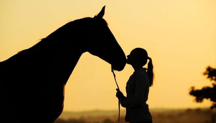 Trabajar con animales, haz de tu pasión tu empleo