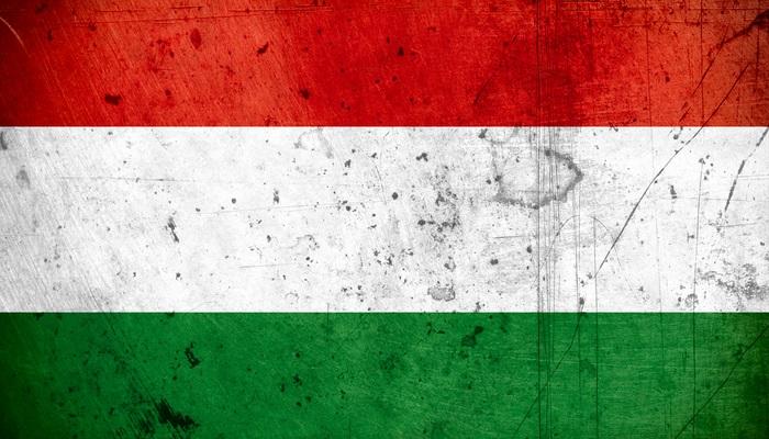 Becas de campamento en Hungría para jóvenes con ansias emprendedoras y viajeras