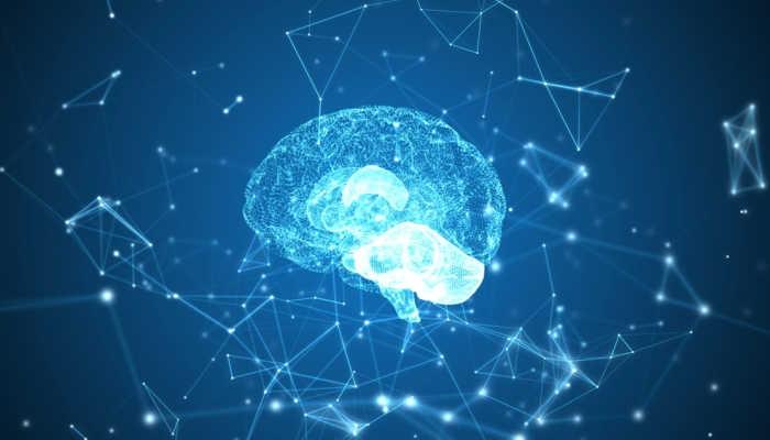 Un estudio revela que dormir es la clave para conservar los recuerdos