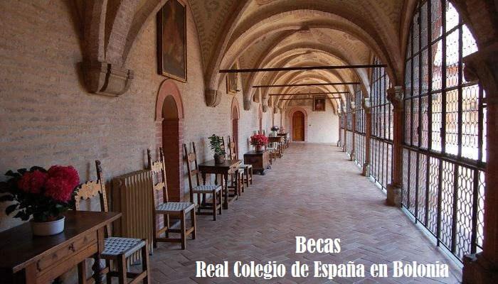"""""""Varón y de conducta irrepensible"""", requisitos para las becas del Cardenal Albornoz en Bolonia"""