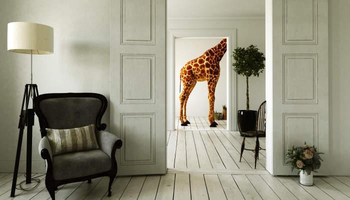 Cómo ser el mejor decorador e interiorista y encajar todos los elementos del diseño
