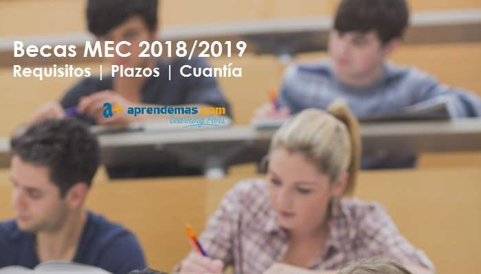 Becas MEC 2018-2019: Preguntas y respuestas sobre las ayudas para estudios postobligatorios