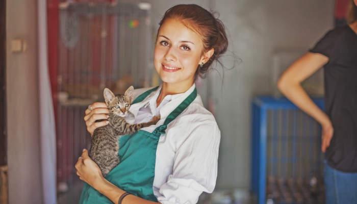 6 cursos pensados para amantes de los animales