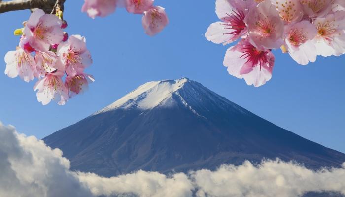 Becas Vulcanus de prácticas en Japón con todos los gastos pagados