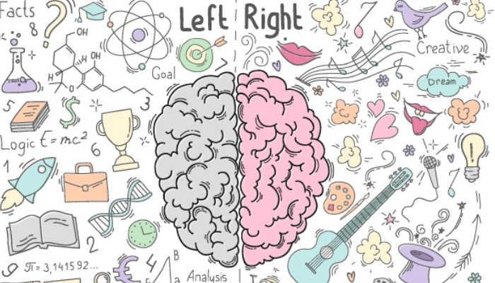 Protege tu cerebro del deterioro cognitivo con estos consejos