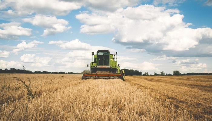 Becas de prácticas del Fondo Español de Garantía Agraria: 11 meses y 1.150 euros mensuales